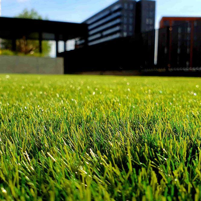 Koop een verticuteermachine of je gras mee bij te houden